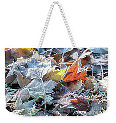 Weekender Tote Bag featuring the photograph Autumn Ends, Winter Begins 3 by Linda Lees