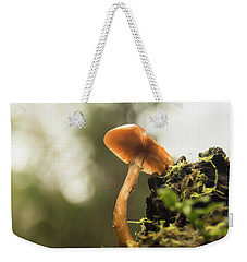Weekender Tote Bag featuring the photograph Autumn Essence by Crystal Hoeveler