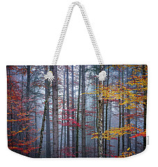 Weekender Tote Bag featuring the photograph Autumn Forest In Fog by Elena Elisseeva