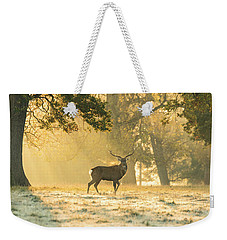 Weekender Tote Bag featuring the photograph Autumn Frost by Scott Carruthers