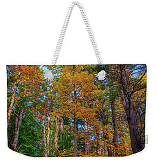 Weekender Tote Bag featuring the photograph Autumn Glow In The Woods by Rick Berk