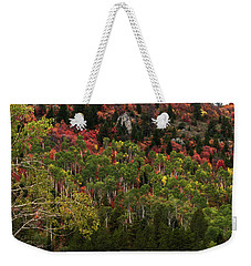 Weekender Tote Bag featuring the photograph Autumn In Idaho by Yeates Photography