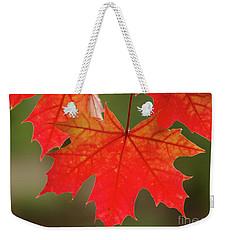 Autumn In Oregon Weekender Tote Bag by Nick Boren