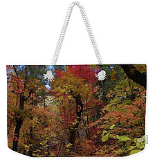 Weekender Tote Bag featuring the photograph Autumn In Sedona by Frank Stallone