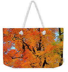 Weekender Tote Bag featuring the photograph Autumn In Southern Ontario by Gary Hall