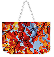 Autumn In The Arboretum Weekender Tote Bag