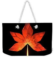 Autumn Leaves - Frame 320 Weekender Tote Bag