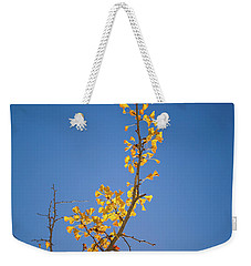 Weekender Tote Bag featuring the photograph Autumn Leaves Is Changing Color During October Fall Season With  by Jingjits Photography