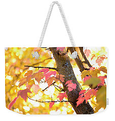 Weekender Tote Bag featuring the photograph Autumn Leaves by Ivy Ho