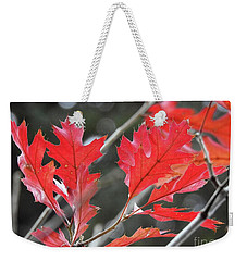 Weekender Tote Bag featuring the photograph Autumn Leaves by Peggy Hughes