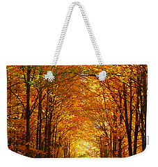 Autumn Light And Leaf Painting Weekender Tote Bag