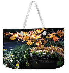 Autumn Maple And Succulents Weekender Tote Bag by Tanya Searcy
