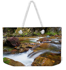 Weekender Tote Bag featuring the photograph Autumn Moment by Mike Dawson