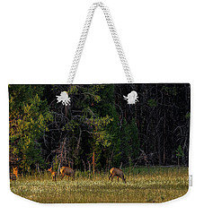 Weekender Tote Bag featuring the photograph Autumn Morning In The Meadow by Yeates Photography