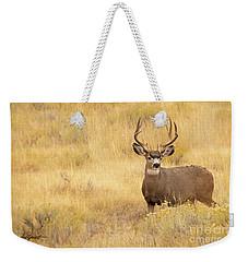 Autumn Mulie Weekender Tote Bag