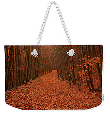 Autumn Passage Weekender Tote Bag by Raymond Salani III