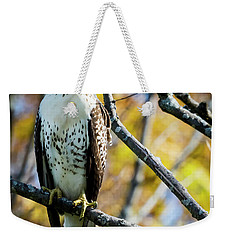 Autumn Red-tailed Hawk Weekender Tote Bag by Ricky L Jones
