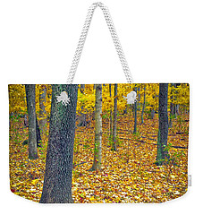 Weekender Tote Bag featuring the photograph Autumn by Samuel M Purvis III