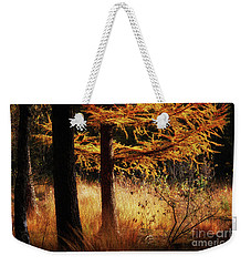Weekender Tote Bag featuring the photograph Autumn Scene In A Dark Forest by Nick Biemans