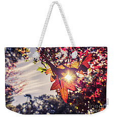 Weekender Tote Bag featuring the photograph Autumn Sky And Colorful Leaves In Fall Season With Sun Shine On  by Jingjits Photography