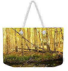 Autumn Soft Light In Stream Weekender Tote Bag