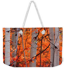 Autumn Splendor Weekender Tote Bag by Don Schwartz