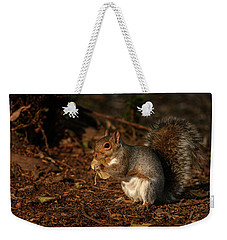 Autumn Squirrel 2 Weekender Tote Bag by Matt Malloy