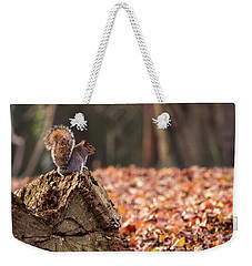 Autumn Squirrel 3 Weekender Tote Bag by Matt Malloy
