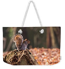 Autumn Squirrel 3 Square Weekender Tote Bag