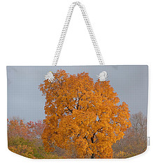 Autumn Tree Weekender Tote Bag by Donald C Morgan