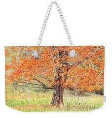 Weekender Tote Bag featuring the photograph Autumn Tree by Geraldine DeBoer