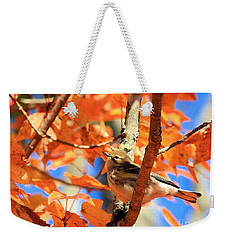 Autumn Warbler Weekender Tote Bag by Debbie Stahre