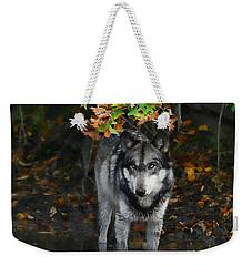 Autumn Wolf Weekender Tote Bag by Shari Jardina