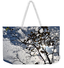 Autumn Yellow Back-lit Tree Branch Weekender Tote Bag