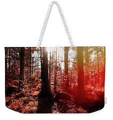 Autumnal Afternoon Weekender Tote Bag