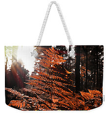 Autumnal Evening Weekender Tote Bag