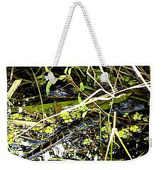Baby Alligator 001 Weekender Tote Bag