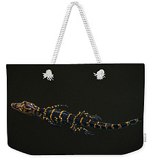 Baby Alligator Delray Beach Florida Weekender Tote Bag