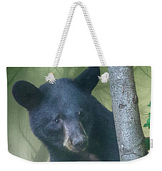 Baby Bear Takes A Peek Weekender Tote Bag