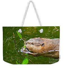 Baby Beaver Weekender Tote Bag by Sean Griffin
