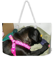 Weekender Tote Bag featuring the photograph Baby Bella by Jewel Hengen
