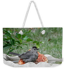 Meow Cat Bird Bathing And Chilling Weekender Tote Bag