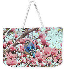 Baby Blue Jay In Magnolia Blossoms  Weekender Tote Bag by Janette Boyd