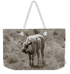 Weekender Tote Bag featuring the photograph Baby Buffalo In Field With Sky by Rebecca Margraf