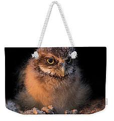 Baby Burrowing Cuteness Weekender Tote Bag by Sue Cullumber