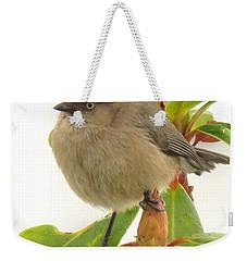 Baby Bushtit Weekender Tote Bag