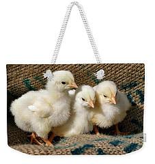 Baby Chicks Weekender Tote Bag