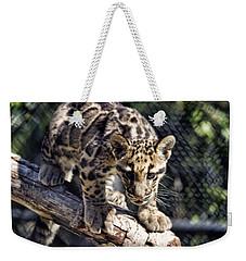 Baby Clouded Leopard Weekender Tote Bag
