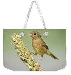 Baby Common Yellow Throat Warbler Weekender Tote Bag