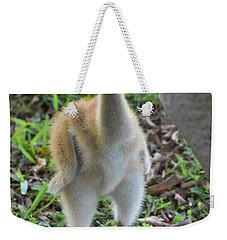 Baby Crane At A Month Old Weekender Tote Bag